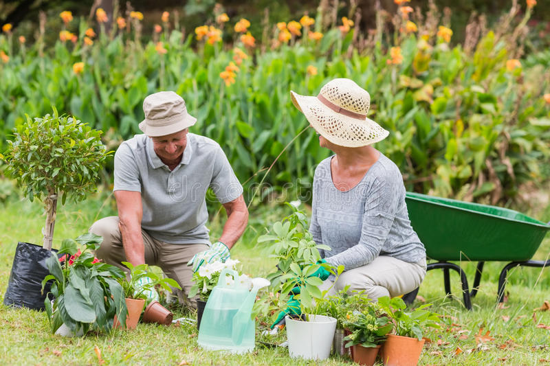 HELPING SENIORS WITH SPRING MAINTENANCE: 5 TIPS